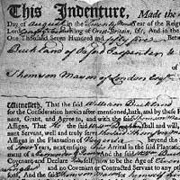 indentured servitude essay